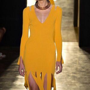 CUSHNIE ET OCHS Dresses - CUSHNIE ET OCHS Marigold Fringe Dress